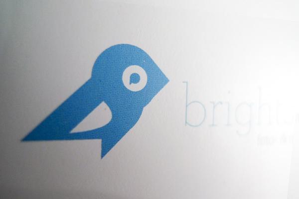 brightside-studio-bird-signetentwicklung-logodesign